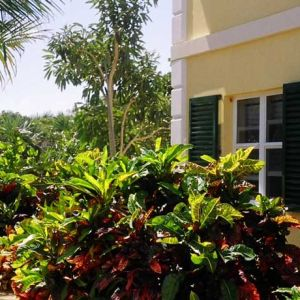 Emerald Shores Landscaping by Guest House