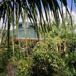 Emerald Shores Main House through Landscaping