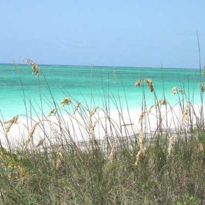 Taylor-Bay-Beach-by-Emerald-Shores-Estate